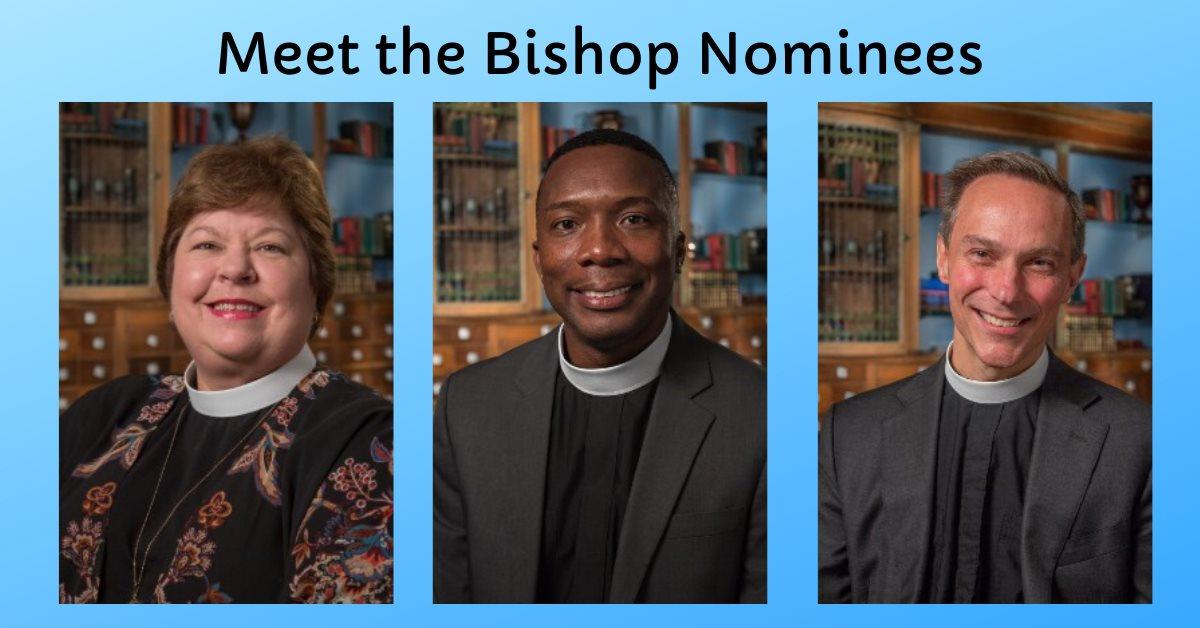 """Tuesday November 5: """"Bishop Walkabout"""""""